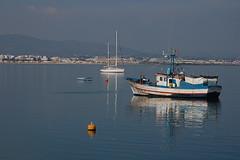 Barcos da Ria Formosa // Bots from Ria Formosa