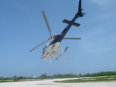Chopper, Cayman Islands (Don McDougall) Tags: happy chopper helicopter snaps 100views 100 cayman caymanislands grandcayman dons mcdougall donmcdougall caymanislandhelicopters caymanislandshelicopters