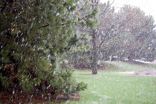 Last #$*& Snow?