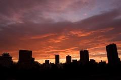 地方中核都市の夕焼け