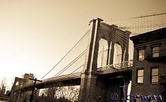 New York 088