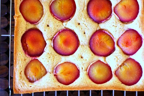 dimply plum cake