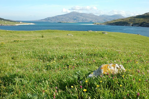 Machair at Huisinis