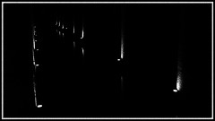The Basilica Cistern III.. (HakanGil) Tags: lighting light bw white black reflection water contrast turkey dark geotagged ancient tank trkiye istanbul architectural hagiasophia cistern sultanahmet ayasofya yerebatan eminn beyazt sirkeci thebasilicacistern yerebatansarnc blackwhitephotos byzantineempire easternrome hakangil theperfectphotographer
