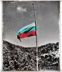 Bulgarian flag (Sigurd66) Tags: cutout europa europe flag bulgaria bandera bulgarie bulgarije bulgarien bulharsko desaturado desaturadoselectivo araquem