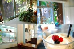 cafe*zzzzz (Yu*Ri) Tags: nature colors japan cafe nikon      d80