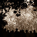FireworksInParis-4698