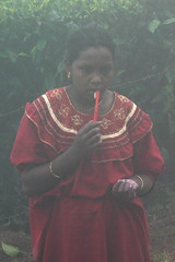 Girl in the mist. Brushing Teeth. Portrait, Munar, Kerala, India. (E. B. Sylvester) Tags: morning portrait woman india mist girl fog teeth kerala brush inde munar ebsylvester