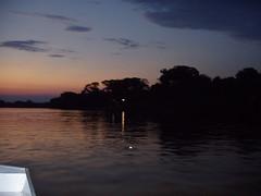 Pantanal (Wilmar Santin) Tags: brazil brasil mt brasilien paisagem ocaso brasile matogrosso pantanal anoitecer brsil pantanalmatogrossence paisagempantaneira paisagemmatogrossence
