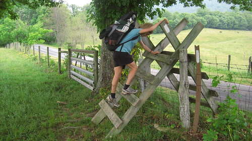 Climbing a Cattle Stile