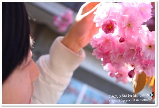 Hokkaido_2328