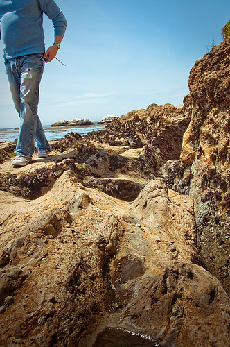 Looking for Tide Pools