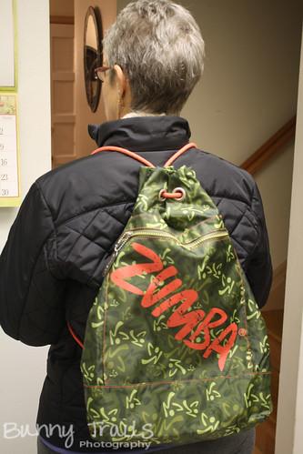 94-zumba bag