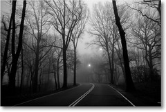 Take me with you (Lazyousuf) Tags: road morning fog foggy forestpark foggymorning