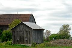 Farm buildings, Teston Road
