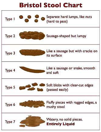 Bristol Stool Chart. Here's a chart to tell you if your stools are normal or