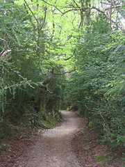 "Nice Path • <a style=""font-size:0.8em;"" href=""http://www.flickr.com/photos/48277923@N00/2621243716/"" target=""_blank"">View on Flickr</a>"