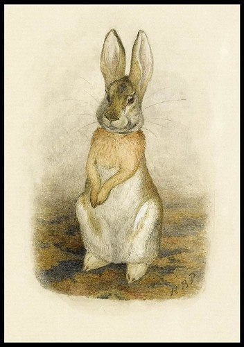 Hare sitting on a patterned carpet
