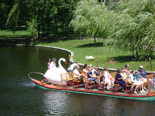 a Swan Boat