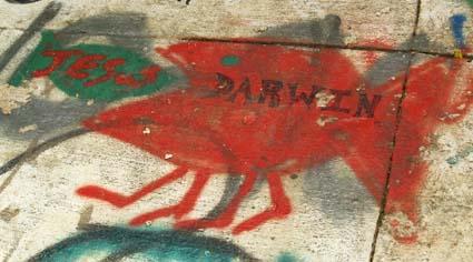 DarwinFish