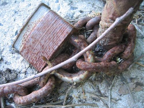 Rusted padlock detail