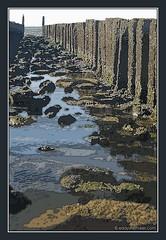Photoshopped (Eddy Westveer) Tags: beach strand photoshop zeeland fkk cs3 nudistbeach oostkapelle naakstrand project366