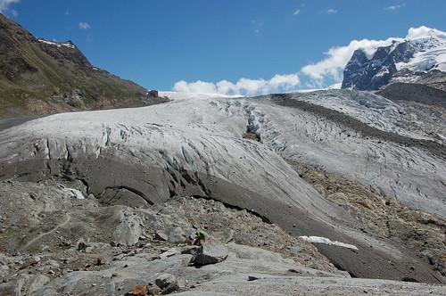 氷河の端が見えた!