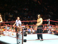 DSC08447 (Eat My Disney Dust) Tags: new york buffalo raw wrestling september rochester kane 2008 bigshow wwe mvp smackdown reymysterio ecw tripleh bluecrossarena greatkhali