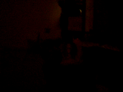 Nate Blowing up bed vid (Simon.Stickel) Tags: ocean auto camera trip family trees ladies girls friends sunset red people orange woman cloud sun white black mountains flower macro tree green simon cars church nature water rose yellow wall clouds laughing sunrise ball nude logo happy fire boat office video woods women europe dress apartment purple floor farm air butt farming hard northcarolina blowing roadtrip visit pot nate laugh latex farmer roads pollen tied davenport sideways onthestreet airmattress stickel iawa simonstickel streetartfreehand