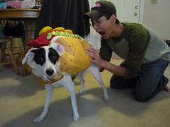 costume testing 002