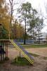 Вяз_DSC07638 (kanat_alimjanov) Tags: осень белка пушкин зеленоград