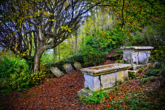 tombs of the elders (petervanallen) Tags: autumn trees graveyard forest dwarf pirates lordoftherings tombs tolkien charnel elve lothlorien mirkwood