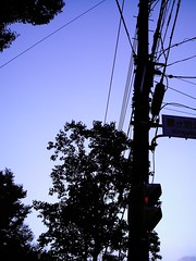 Signal (izone 550 WB:Fluorescent)
