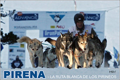 Huskies Port Aine_Pirena 2008