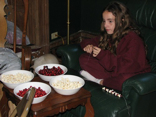 string popcorn and cranberries