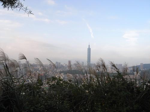 你拍攝的 98遠方的101大樓。