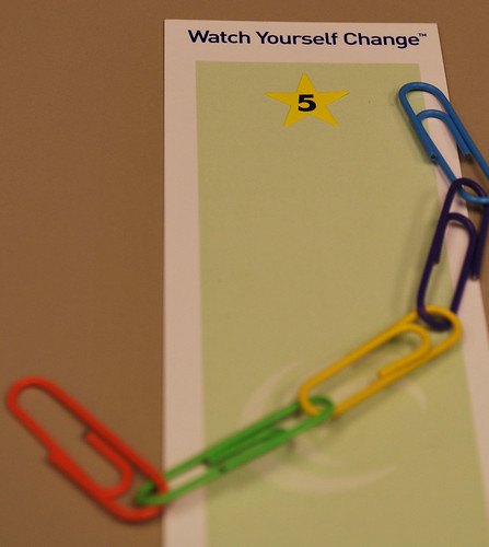 weight watchers chain