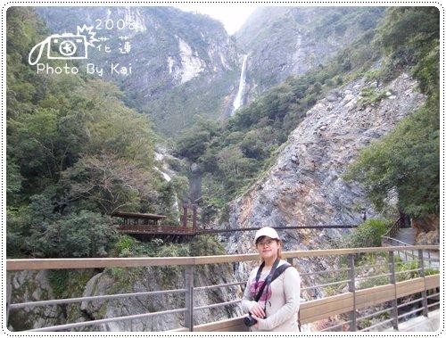 白楊步道 (7)