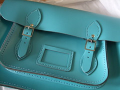 Turquoise Leather Beauty