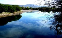 Blue river (Doc Albores) Tags: méxico durango lalaguna lerdo comarcalagunera rionazas docalbores