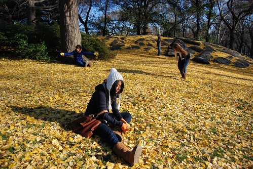 Sitting in the Gingko Leaves