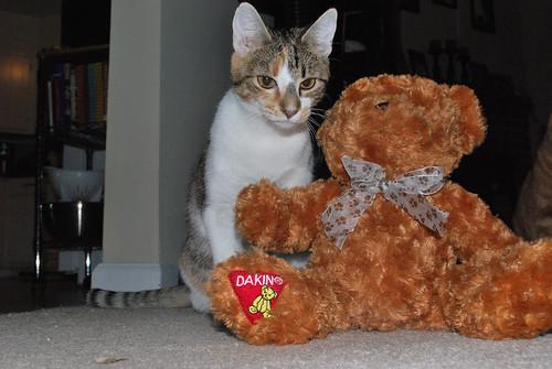 callie and bear