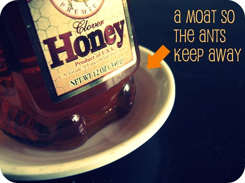 So the ants don't invade the honey!