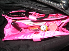 Close Up of Pouchee (authenticeducator) Tags: purse organize pouchee