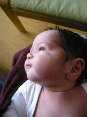 Baby in profile