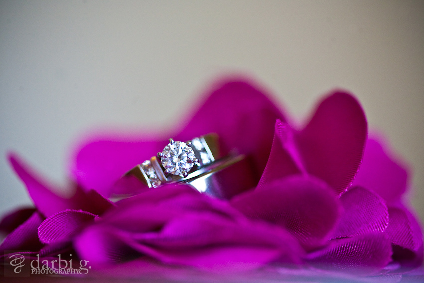 Darbi G Photography-Allison-Zack-wedding-_MG_4989