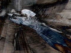 gargoyle (JMVerco) Tags: photomanipulation digitalart creative création creazione stealingshadows awardtree miasbest trolledproud jmlinder