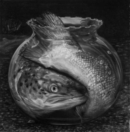 Cindy Wright, Fish tank, 2009