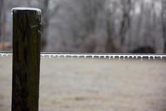 DSC_0077 (setao86) Tags: winter snow macro ice landscape frozen spring scenery frost icesickles
