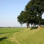 Beemster: Oostdijk landscpae in summer